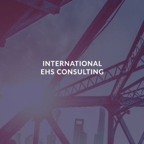 INTERNATIONAL EHS CONSULTING